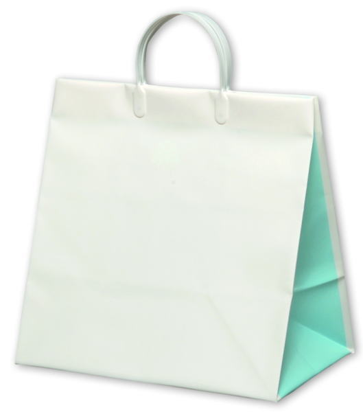 引き出物袋・引出物袋 カラーセレクション スカイブルー